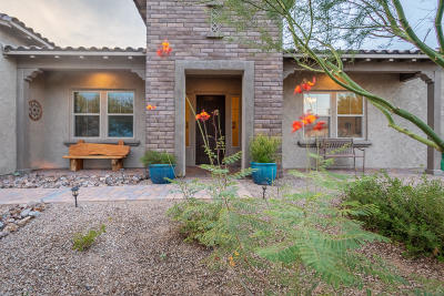 Marana Single Family Home For Sale: 12321 N Durham Wash Drive