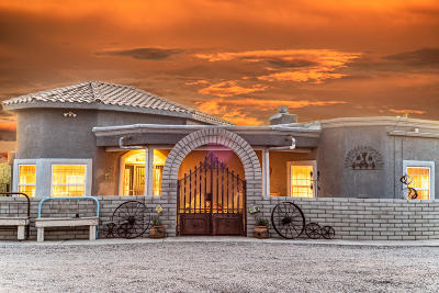 Green Valley Single Family Home For Sale: 3949 W Calle Siete