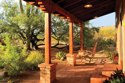 Tucson Single Family Home For Sale: 2335 N Avenida Sorgo