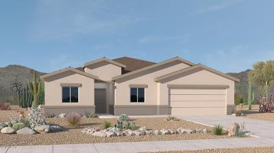 Tucson Single Family Home For Sale: 6748 S Victor Drive