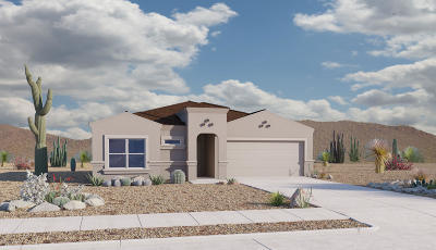 Tucson Single Family Home For Sale: 4186 E White Water Drive