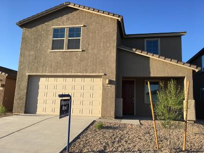 Tucson Single Family Home For Sale: 6836 W Canopus Loop