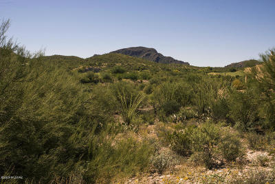 Tucson Residential Lots & Land For Sale: 885 S Tohono Ridge Place #38