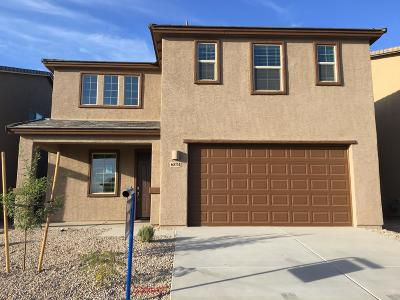 Tucson Single Family Home For Sale: 6834 W Canopus Loop