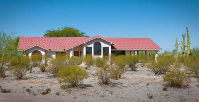 Tucson Single Family Home For Sale: 3304 S Saguaro Shadows Drive