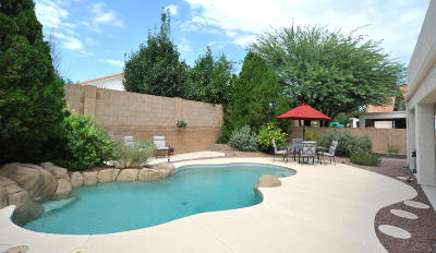 Oro Valley Single Family Home Active Contingent: 12133 N New Dawn Avenue