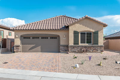 Marana Single Family Home For Sale: 14374 N Whitehorn Place