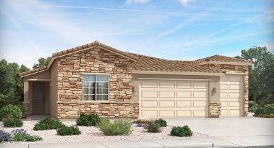 Marana Single Family Home For Sale: 10915 W Pintail Drive