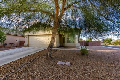 Marana Single Family Home For Sale: 11918 W Heyburn Drive