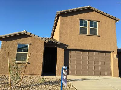 Tucson Single Family Home For Sale: 6830 W Canopus Loop