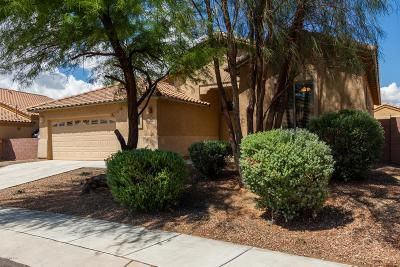 Sahuarita Single Family Home Active Contingent: 330 N Oak Tree Canyon Loop