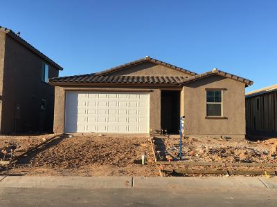 Tucson Single Family Home For Sale: 6828 W Canopus Loop