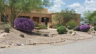 Tucson Single Family Home For Sale: 1285 W Appian Place