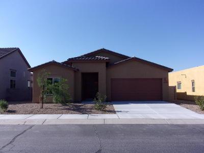 Single Family Home Active Contingent: 6378 E Boldin Drive
