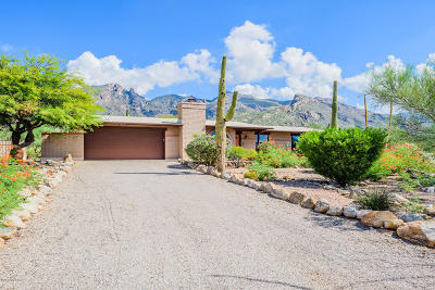 Single Family Home For Sale: 3887 E Marshall Gulch Place
