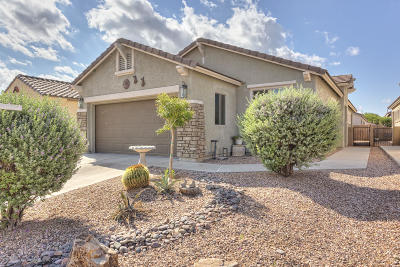 Sahuarita Single Family Home For Sale: 279 W Calle Media Luz