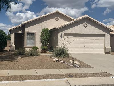 Tucson Single Family Home For Sale: 2010 W Cholla Vista Drive