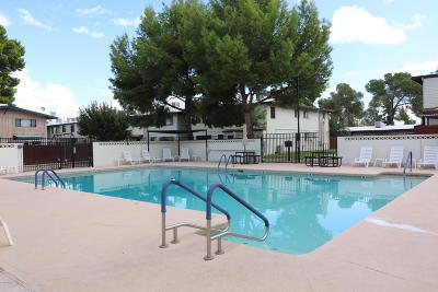 Tucson Condo For Sale: 1360 S Avenida Polar #J-207