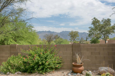 Tucson Single Family Home Active Contingent: 3260 N Rambling Creek Place