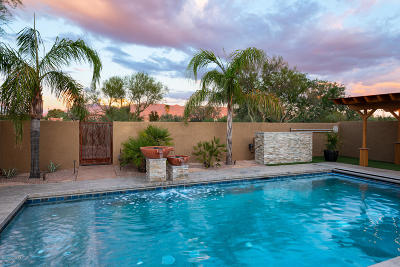 Tucson Single Family Home For Sale: 87 S Shadow Creek Place