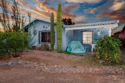 Tucson Single Family Home For Sale: 810 W Paris Promenade