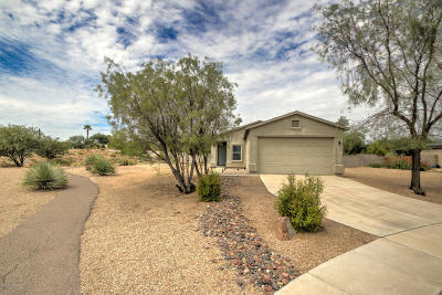 Sahuarita Single Family Home For Sale: 18876 S Avenida Paso Cortito