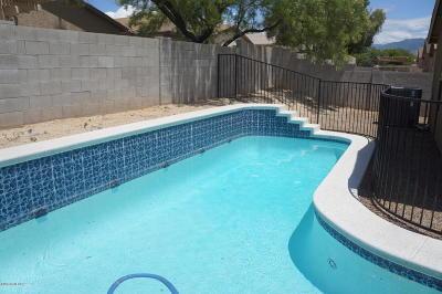 Tucson Single Family Home For Sale: 10013 E Rocky Wash Drive