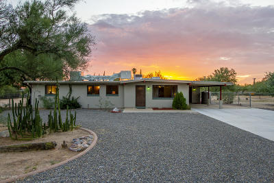 Tucson Single Family Home For Sale: 8835 N Hickory Drive