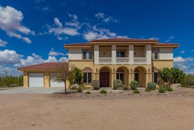 Pima County Single Family Home For Sale: 5325 N Sandario Road