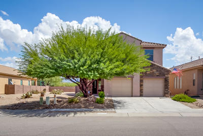 Vail Single Family Home For Sale: 10625 S Miramar Canyon Pass