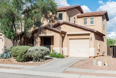 Tucson Single Family Home For Sale: 3350 N Sierra Springs Drive