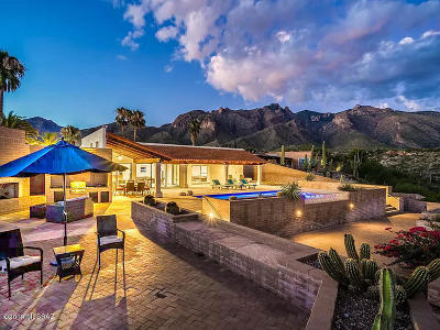 Tucson Single Family Home For Sale: 6802 N Table Mountain Road