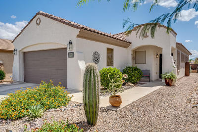 Sahuarita Single Family Home For Sale: 407 W Calle Del Estribo