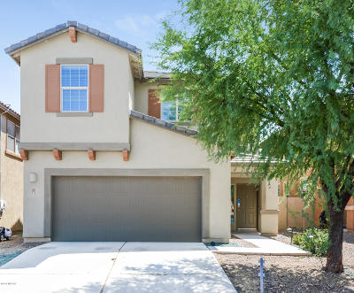 Sahuarita Single Family Home For Sale: 713 W Calle Capotasto