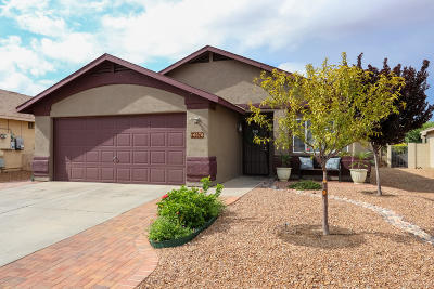 Tucson Single Family Home For Sale: 10078 E Paseo San Ardo
