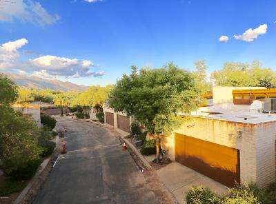 Tucson Single Family Home For Sale: 1984 E Campbell Terrace
