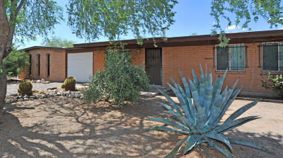 Tucson Single Family Home For Sale: 1220 W Newton Drive
