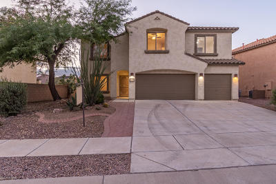 Sahuarita Single Family Home For Sale: 14326 S Via Del Moro