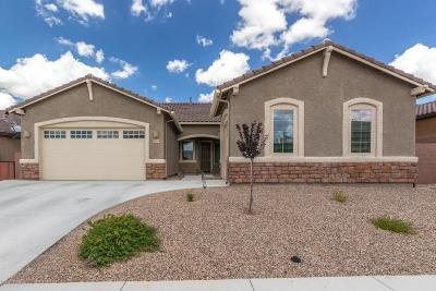 Marana Single Family Home For Sale: 5450 W Bajada Drive