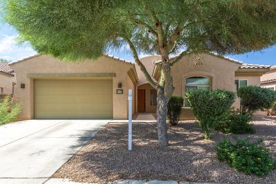 Tucson Single Family Home For Sale: 8533 N Crosswater Loop