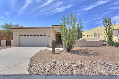 Tucson Single Family Home For Sale: 2130 S Triangle X Lane