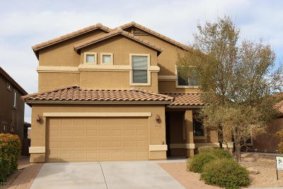 Tucson Single Family Home For Sale: 9034 S Silkwood Lane