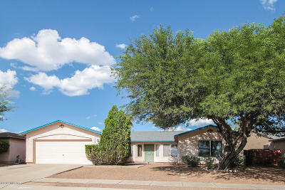 Tucson Single Family Home For Sale: 9955 E Depot Drive