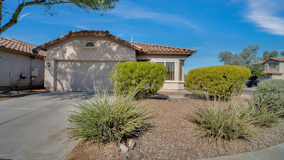 Tucson Single Family Home For Sale: 9563 N Englewood Drive