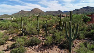 Tucson Residential Lots & Land For Sale: 4700 W Saguaro Cliffs Drive #4
