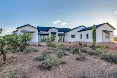Tucson Single Family Home For Sale: 2585 N Lloyd Bush Drive