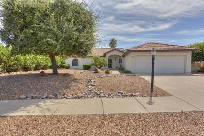 Green Valley Single Family Home For Sale: 455 S Camino Triunfante