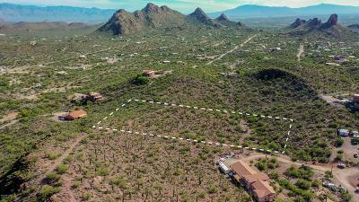 Tucson Residential Lots & Land For Sale: 5655 S Catclaw Avenue