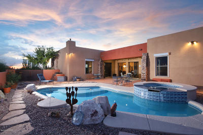 Tucson Single Family Home For Sale: 3890 W Oasis Drive