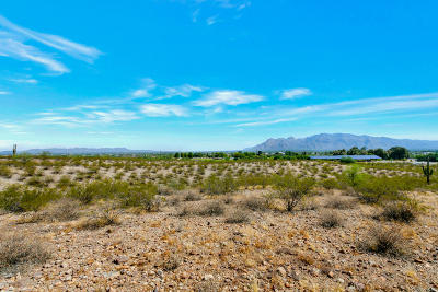 Tucson Residential Lots & Land For Sale: N Silverbell Lot #1 Road #1